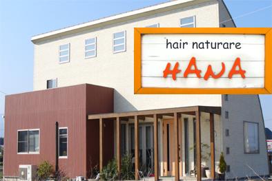 HANA hair natural